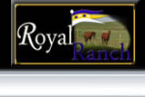 Royal Ranch New Homes by Kaski New Homes, Rapid City, SD
